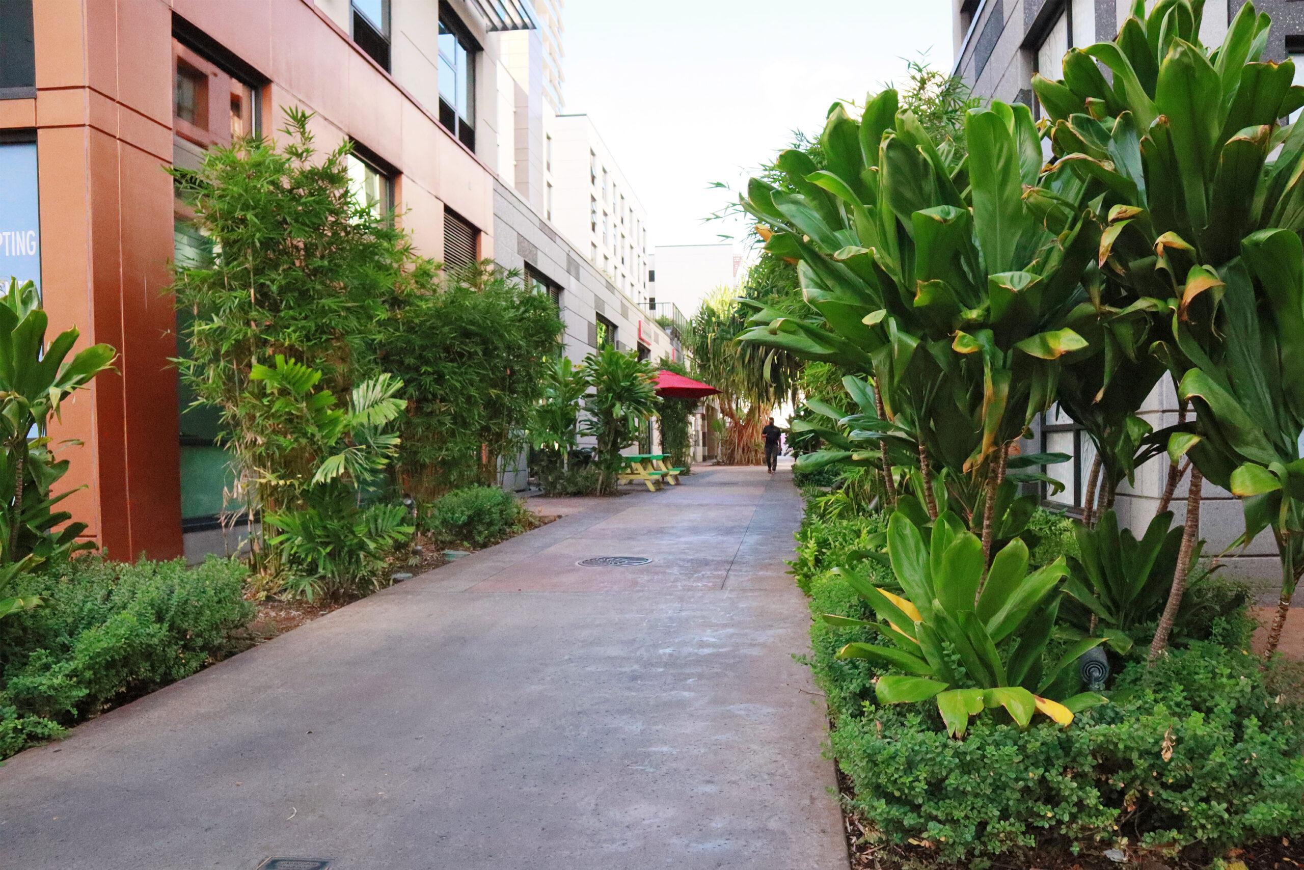 Keauhou Lane Green Space